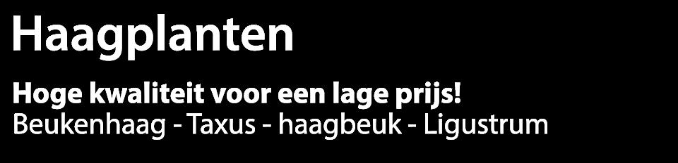 Haagbeuk.eu